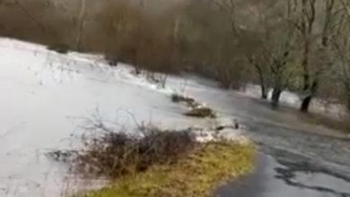Photo of Pradorramisquedo (Viana do Bolo), incomunicado polas inundacións