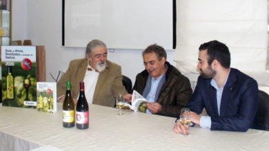 """Photo of Valdeorras, a denominación ourensá con máis medallas de """"Gran Ouro"""" na """"Guía Paadín"""""""