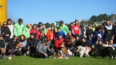 Photo of O IV Canicross de Ourense supera as expectativas