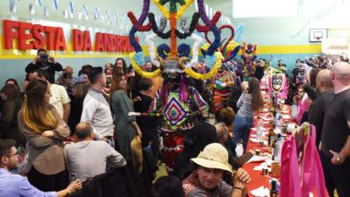 Photo of A 50ª Festa da Androlla de Viana do Bolo, en imaxes