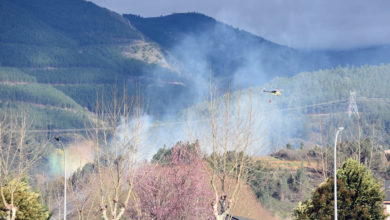 Photo of Incendio forestal en Tremiñá (O Barco)