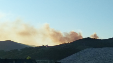 Photo of Extinguido o incendio forestal de San Vicente (Vilamartín), tras queimar 30,75 hectáreas