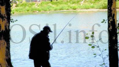 Photo of Aprobada a nova Lei de pesca continental