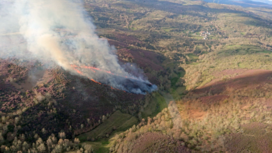 Photo of Incendio forestal en Rabal (Chandrexa de Queixa)