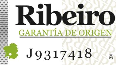 Photo of A D.O. Ribeiro inicia un estudo de custos de produción de uva no seu territorio