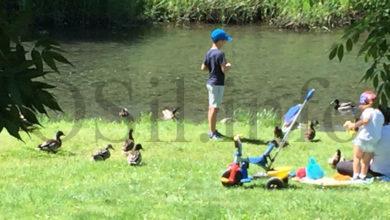 Photo of Os máis pequenos tamén desfrutan da natureza na desescalada