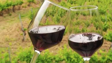 Photo of Os brindes dende a casa con viños da D.O. Ribeira Sacra teñen premio