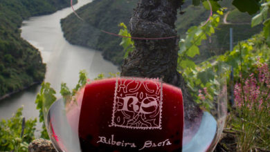 Photo of Brinde virtual con viños da Ribeira Sacra polo #DíaMovementoViñoDO