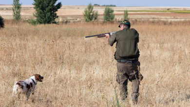 Photo of Medio Ambiente apraza as probas para a obtención da primeira licenza de caza