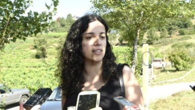 Photo of O BNG propón axudas directas da Xunta ao sector do viño para paliar a crise do Covid-19