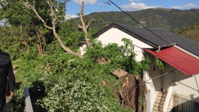 Photo of A tormenta provoca a caída de árbores nas estradas de Río e sobre dúas casas en Navea (Trives)