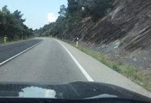 Photo of Un xabarín coas súas crías provoca un accidente na N-120 entre Vilamartín e A Rúa