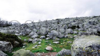 Photo of Vilariño de Conso e Manzaneda acollerán campos de voluntariado neste verán