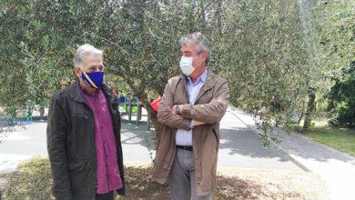 Photo of Quiroga recibe a visita do director xeral de AGACAL para afondar na consecución da D.O.P para o aceite