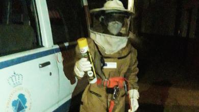 Photo of Protección Civil da Rúa retira outro niño de velutina en Vilela