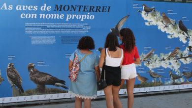 Photo of Reabre o Museo Claustro Mercedario de Verín