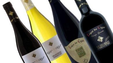 "Photo of Catro viños da adega ruesa Melillas e Fillos, premiados no ""International Wine Awards"""