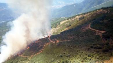 Photo of Incendio forestal en Pardollán (Rubiá) que afecta ao Parque Natural da Serra da Enciña da Lastra