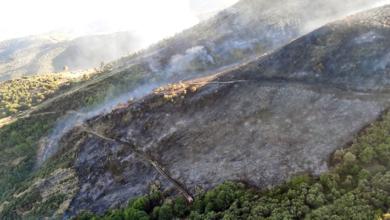 Photo of Estabilizado o incendio de Pardollán (Rubiá) que afecta ao Parque da Serra da Enciña da Lastra