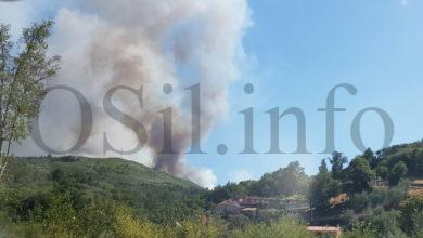 Photo of Incendio forestal nas proximidades da cidade de Ourense