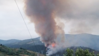 Photo of Incendio forestal en Enciñeira (Quiroga)
