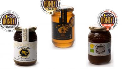 Photo of Premios para un mel quirogués e outro ourensán en Londres