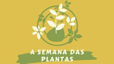 Photo of Obradoiro de manualidades en San Xoán de Río do 31 de agosto ao 4 de setembro