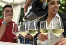 Photo of A Feira do Viño da D.O. Monterrei será virtual nesta edición