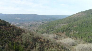 Photo of Os montes de Laza, pioneiros na absorción de CO2 en Ourense