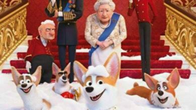 """Photo of """"Corgi: as mascotas da raíña"""" proxectarase este venres en Portela (Vilamartín)"""