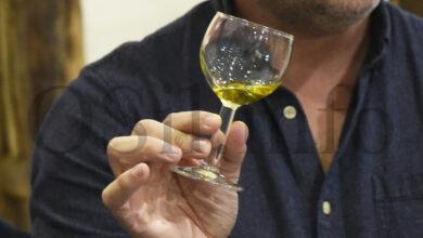 Photo of Unha análise certifica o alto contido de polifenois do aceite de Quiroga
