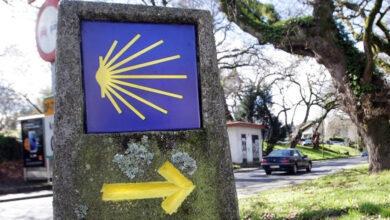 Photo of Axudas para a mellora da paisaxe no Camiño en varios concellos de Ourense