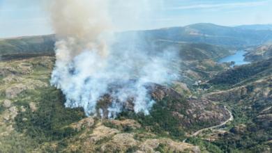 Photo of Activo un novo incendio en Pradorramisquedo (Viana do Bolo)
