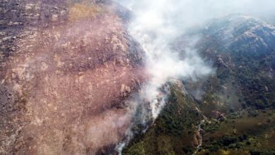 Photo of Extinguido o incendio forestal de Manín (Lobios)