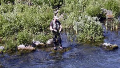 Photo of A vindeira tempada de pesca traerá novas medidas de xestión fluvial no tramo internacional do Río Miño