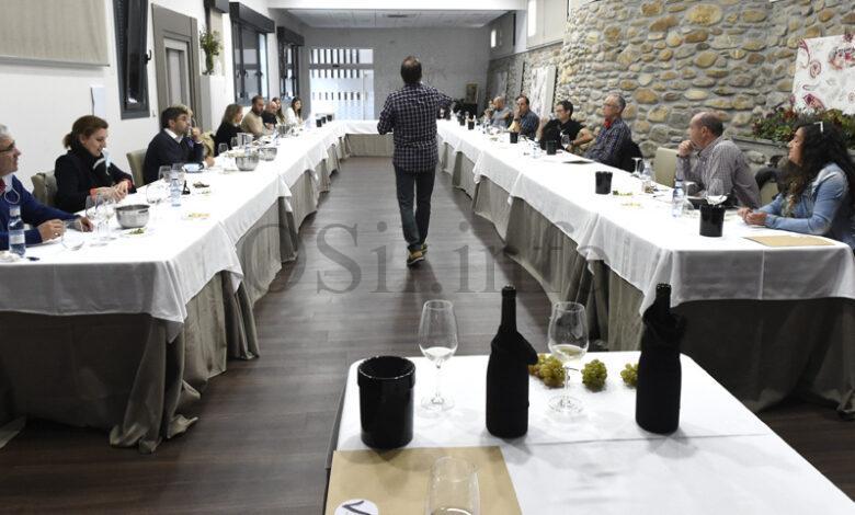 """Photo of Aprendendo as claves da cata no curso """"Del uva tal viño"""", da Ruta do Viño de Valdeorras"""