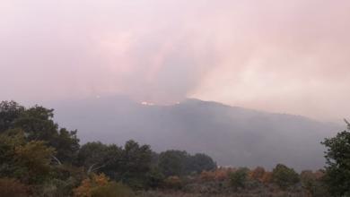 Photo of Once incendios activos seguen asolando a provincia