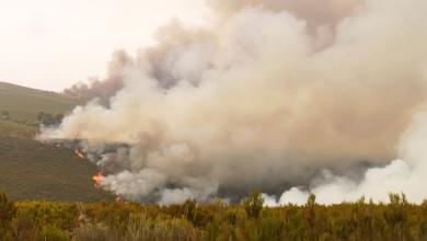 Photo of Estabilizados os incendios de Vilariño, Chandrexa, Manzaneda, A Mezquita, Montederramo e Rairiz de Veiga