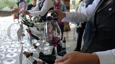 Photo of Modifícase o programa das Xornadas de Portas Abertas da Ruta do Viño de Valdeorras ante a situación sanitaria