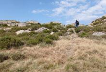 Photo of Propostas para desfrutar da montaña e dos bosques da Veiga e Porto en todo o seu esplendor