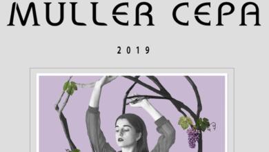 """Photo of A Adega Ronsel do Sil celebra o Día da Muller Rural co novo viño """"Muller Cepa"""""""