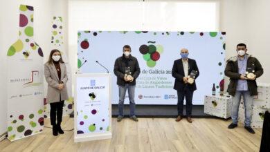 Photo of Pepa Porter, Vía Arxéntea e Quinta das Tapias, viños de Monterrei premiados na Cata de Galicia