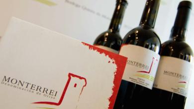 """Photo of 27 vinos da D.O. Monterrei superan os 90 puntos na """"Guía Peñín 2021"""""""