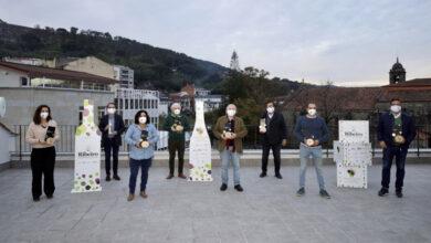 Photo of Sete viños da D.O. Ribeiro, premiados na Cata de Galicia