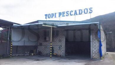 Photo of Rouban preto de 50.000 euros en mercadoría conxelada en Pescados Topi de Vilamartín